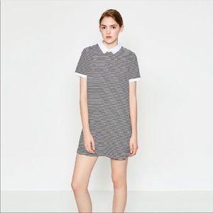 Zara | Striped Poplin Collar Shift Dress Small